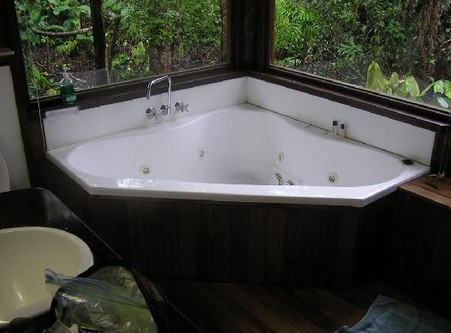 The Canopy Rainforest Tree Houses and Wildlife Sanctuary - Accommodation Brisbane