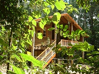 Rivers Edge Rainforest Retreat - Accommodation Brisbane