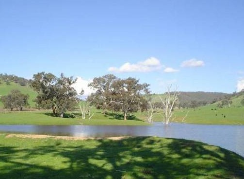 Hillview Farmstay - Accommodation Brisbane