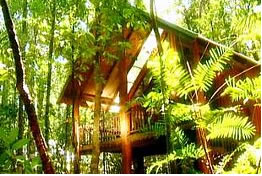 The Canopy Treehouses - Accommodation Brisbane