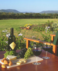 Tranquil Vale Vineyard Cottages - Accommodation Brisbane