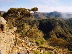 Bendleby Ranges - Accommodation Brisbane