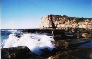 Terrigal Lagoon Bed and Breakfast - Accommodation Brisbane