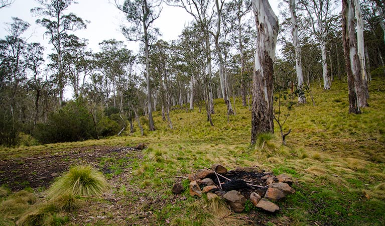 Gummi Falls campground - Accommodation Brisbane