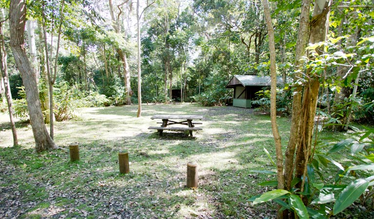 Iron Pot Creek campground - Accommodation Brisbane