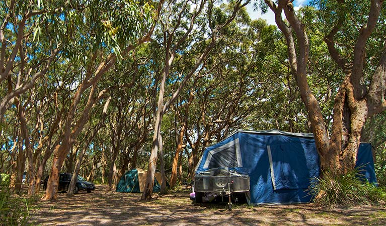 Stewart and Lloyds campground - Accommodation Brisbane