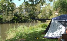 Williams River Holiday Park - Accommodation Brisbane