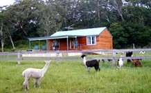 Moorallie Cottage Farm Stay - Accommodation Brisbane