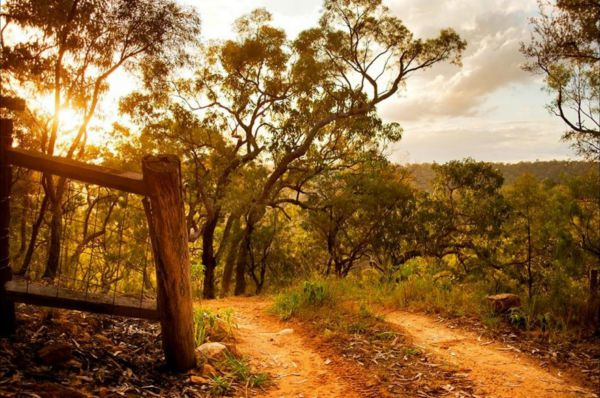 Kurrajong Trails and Cottages - Accommodation Brisbane