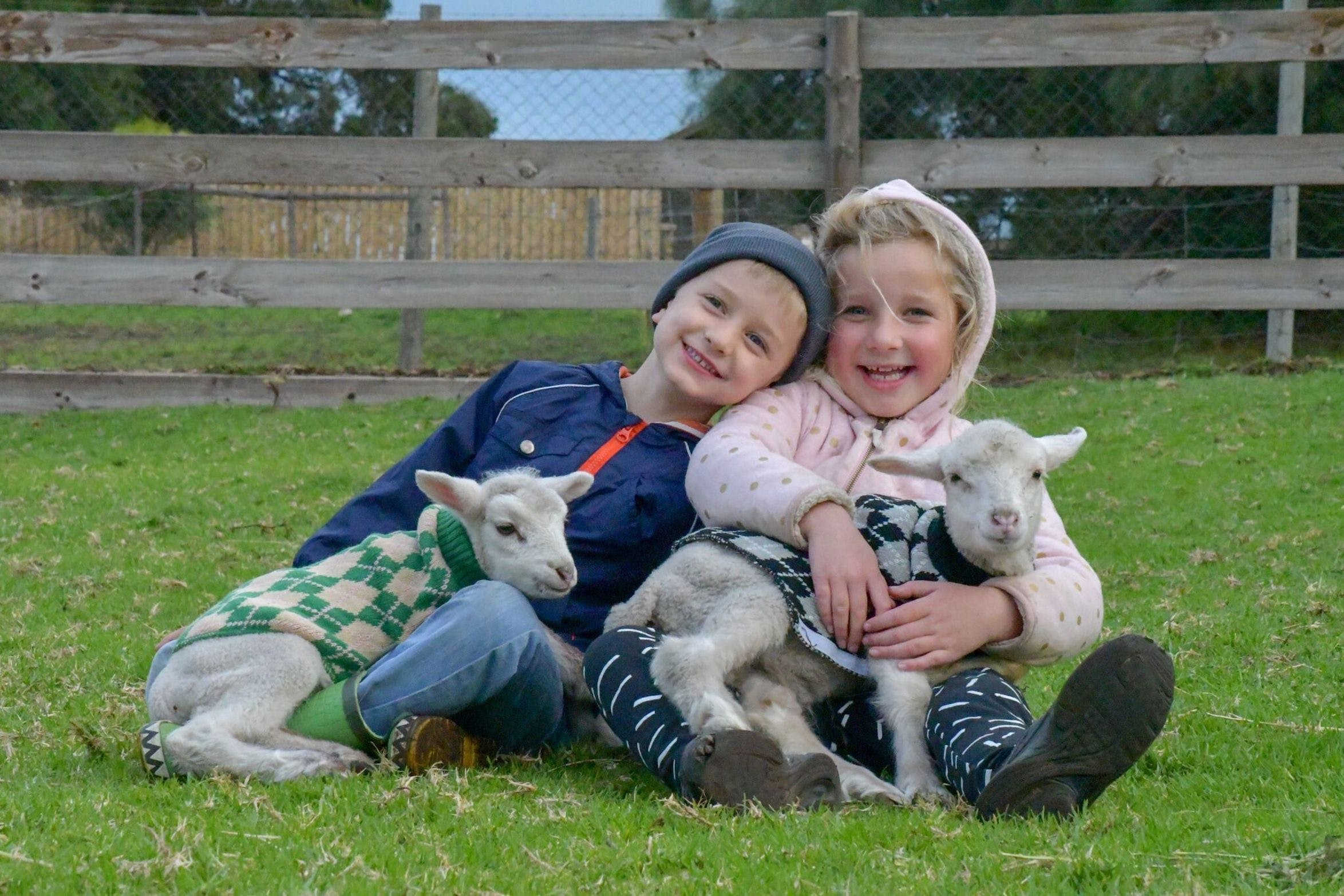 Narnu  Farm Farm stay/ School Camp - Accommodation Brisbane