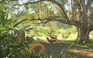Nimbin Rox YHA - Accommodation Brisbane