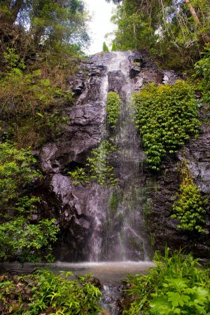 Nimbin Waterfall Retreat - Accommodation Brisbane