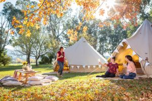 Valley View Glamping - Accommodation Brisbane