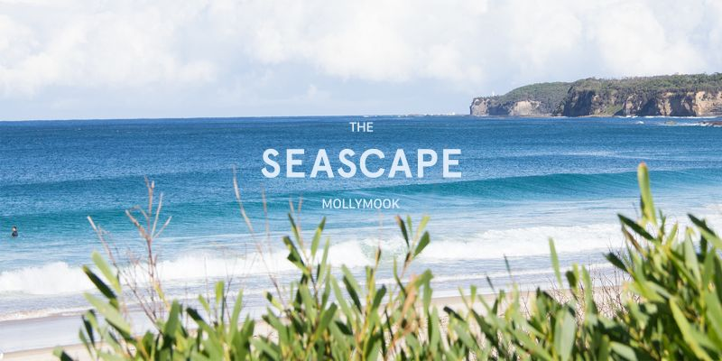 Mollymook Seascape Motel  Apartments - Accommodation Brisbane