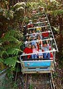 Scenic World Blue Mountains - Accommodation Brisbane