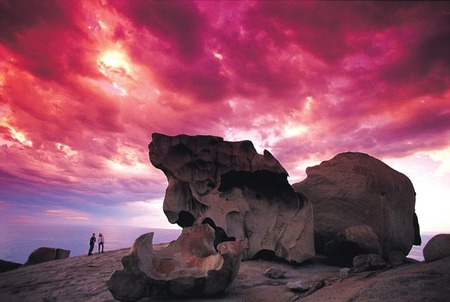 Kangaroo Island Adventure Tour 2 day/1 night