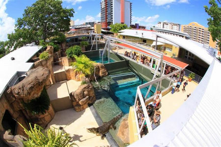 Crocosaurus Cove - Accommodation Brisbane