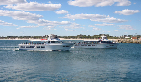 Mills Charters Fishing And Whale Watch Cruises - Accommodation Brisbane