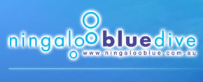 Ningaloo Blue Dive - Accommodation Brisbane
