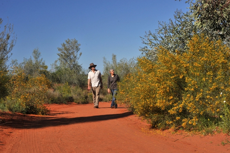 Alice Springs Desert Park - Accommodation Brisbane