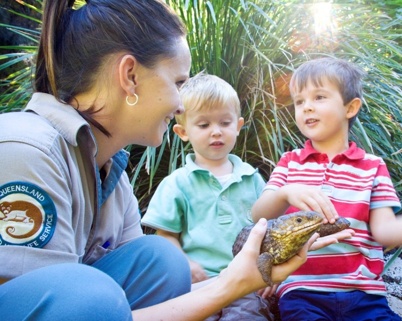 David Fleay Wildlife Park - Accommodation Brisbane