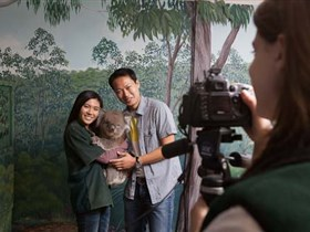 Cleland Wildlife Park - Accommodation Brisbane