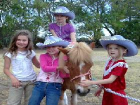 Amberainbow Pony Rides - Accommodation Brisbane