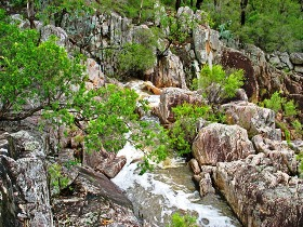 Crows Nest National Park - Accommodation Brisbane