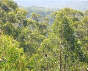 Bunyip State Park - Accommodation Brisbane
