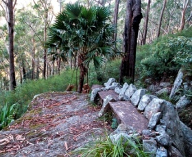 Wodi Wodi Walking Track