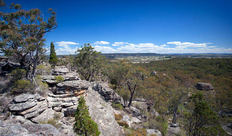 Munghorn Gap Nature Reserve - Accommodation Brisbane