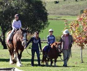 Bathurst Farm Experience - Accommodation Brisbane