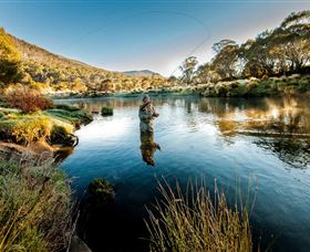 Fly Fishing Tumut - Accommodation Brisbane