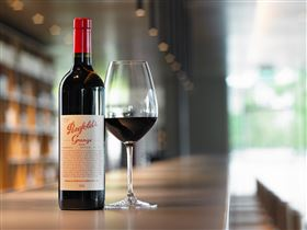 Penfolds Magill Estate - Accommodation Brisbane