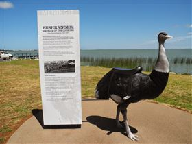 Birdman of the Coorong - Accommodation Brisbane