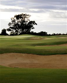 Black Bull Golf Club - Accommodation Brisbane