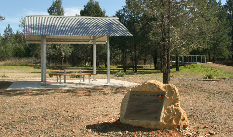 Terry Hie Hie picnic area - Accommodation Brisbane