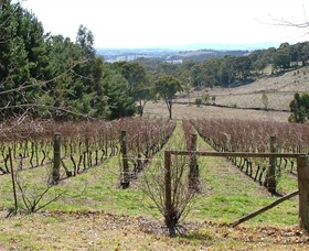 Habitat Vineyard - Accommodation Brisbane