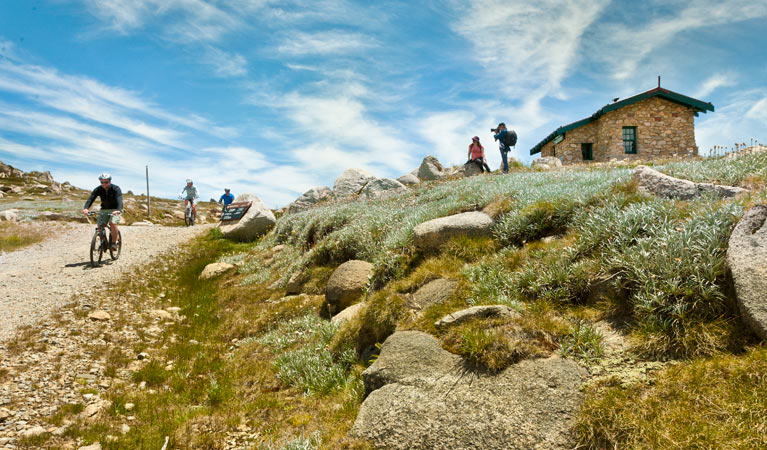 Mount Kosciuszko Summit walk - Accommodation Brisbane