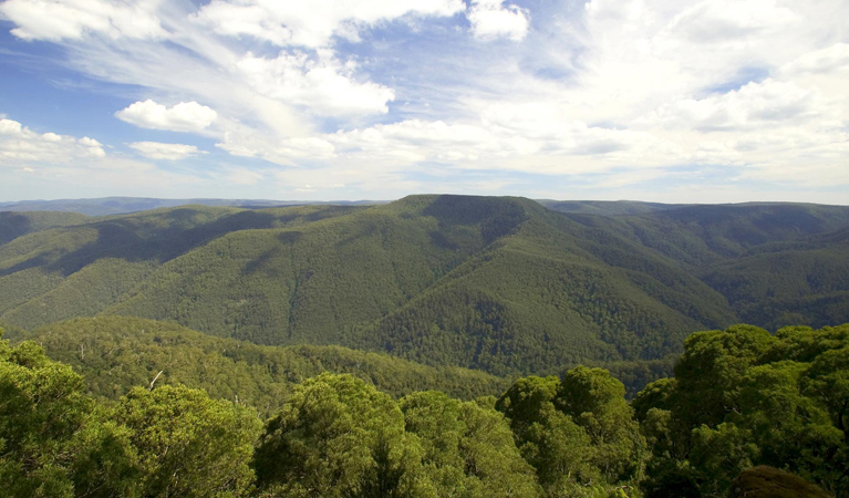 Barrington Tops National Park - Accommodation Brisbane