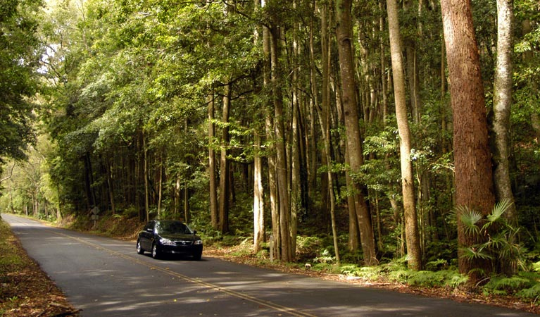 Greater Blue Mountains drive - Accommodation Brisbane