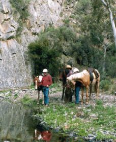 Yarramba Horse Riding - Accommodation Brisbane