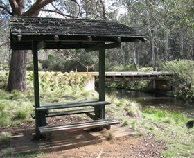 Barrington Tops State Forest - Accommodation Brisbane
