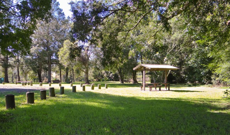 Moore Park picnic area - Accommodation Brisbane