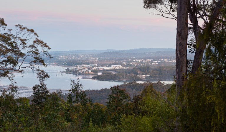 Holmes lookout
