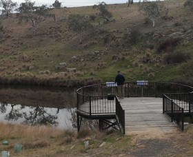 Bombala Platypus Reserve - Accommodation Brisbane