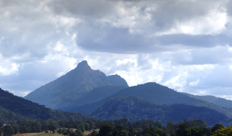 Wollumbin National Park - Accommodation Brisbane
