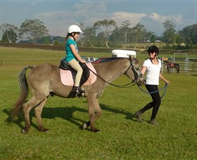 Port Macquarie Horse Riding Centre - Accommodation Brisbane