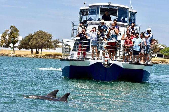 Mandurah Dolphin and Scenic Canal Cruise - Accommodation Brisbane