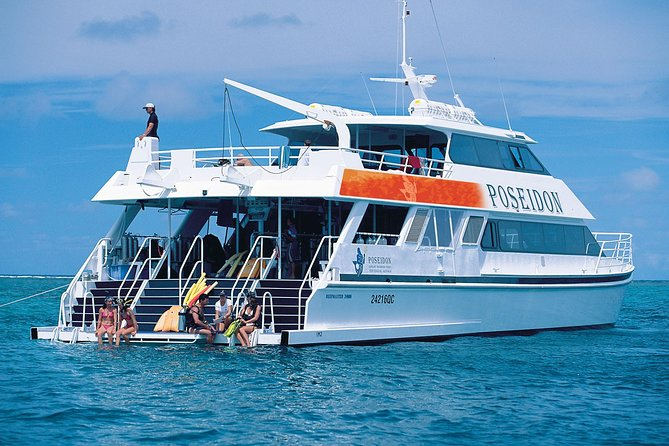 Poseidon Outer Great Barrier Reef Snorkeling and Diving Cruise from Port Douglas - Accommodation Brisbane